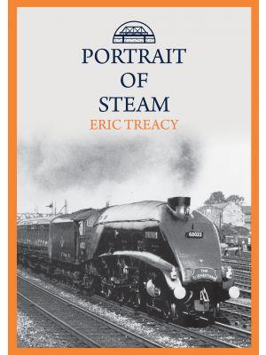 Portrait of Steam
