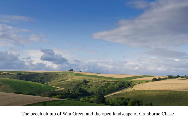 Cranborne Chase - Microsoft Word - Document1