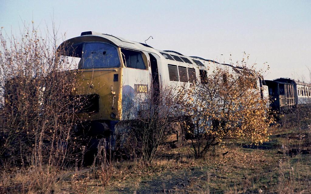 Class 52 1
